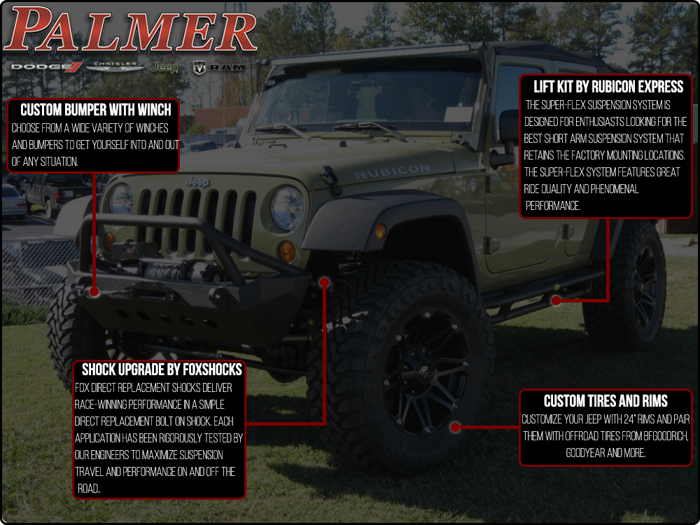 Custom Wrangler Infographic